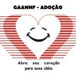 GAANNF - Grupo de Apoio à Adoção do Norte/Noroeste Fluminense